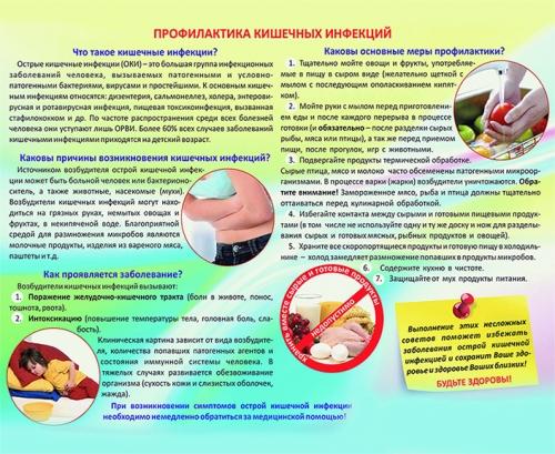 """Виниловая таблица """"Профилактика кишечных инфекций"""" 100х140 см"""