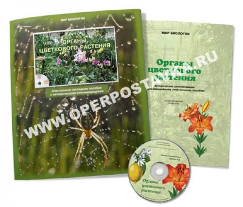 """Электронное пособие """"Органы цветкового растения"""""""