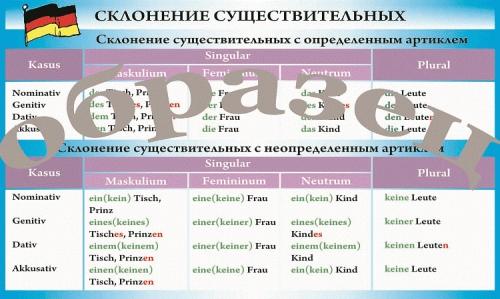 """Виниловая таблица """"Немецкий язык. Склонение существительных"""" формат 100х140 см"""