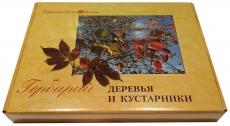 """Гербарий """"Деревья и кустарники"""" (20 видов)"""