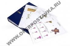 Гербарий к курсу основ общей биологии (20 листов)