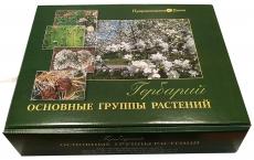 """Гербарий """"Основные группы растений"""" (52 листа)"""
