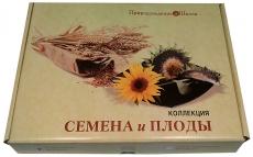 """Коллекция """"Семена и плоды"""""""
