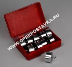 Набор грузов по механике (10 шт., по 50 гр)